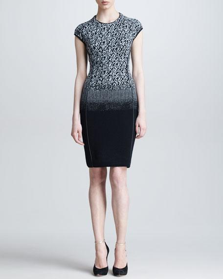 Ombre Leopard Knit Dress