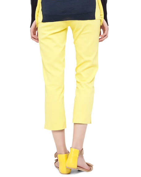Fabricia Cropped Techno Pants