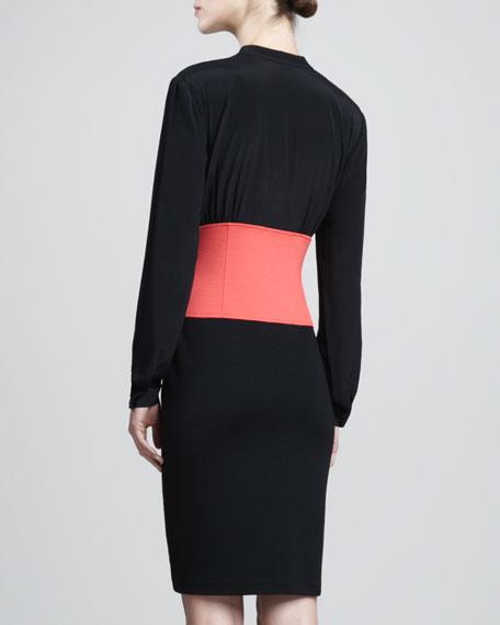 Long-Sleeve Milano Colorblock Dress, Caviar/Hibiscus