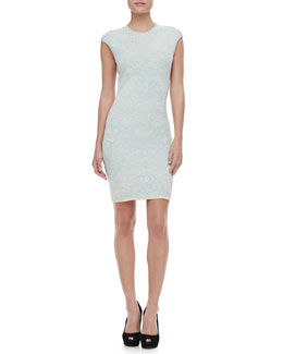 Alexander McQueen Fitted Crochet-Lace Dress