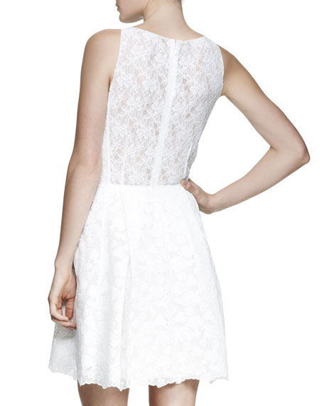 Sheer-Back Sleeveless Lace Dress