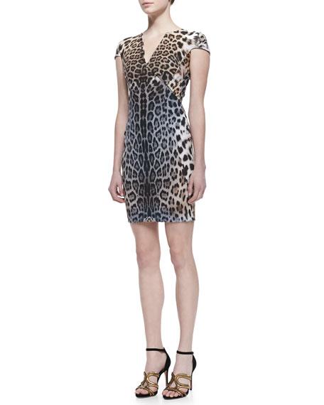 Degrade Leopard Print Cap-Sleeve Dress