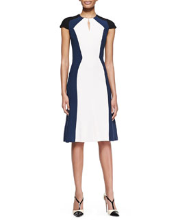 Carolina Herrera Short-Sleeve Colorblock Stretch Viscose Dress