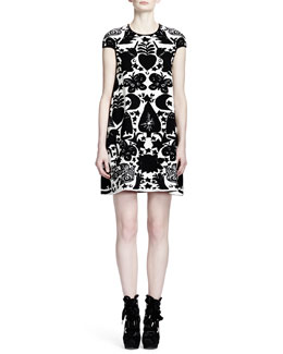 Alexander McQueen Fairytale Intarsia Cap-Sleeve Dress