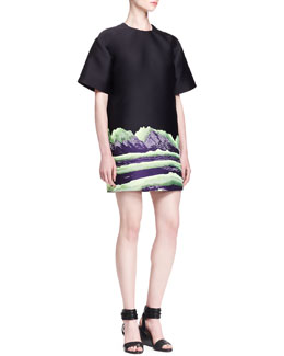 Alexander Wang Mountain-Print T-Shirt Dress