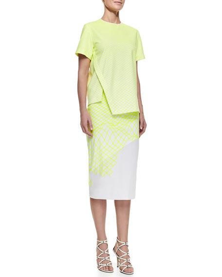 Cycle Organza Skirt