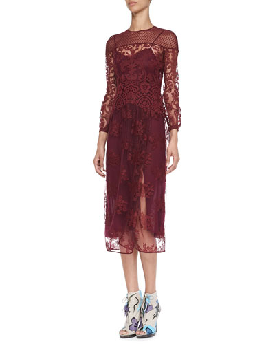 Burberry Prorsum Floral-Embroidered Tulle Dress