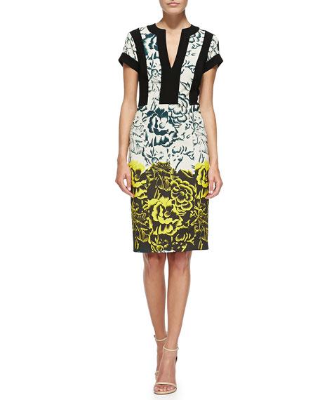 Etro Deep Floral Sheath Dress W/ Bordered Bodice