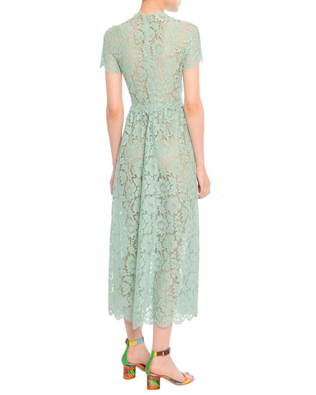 Short-Sleeve Tea-Length Lace Gown