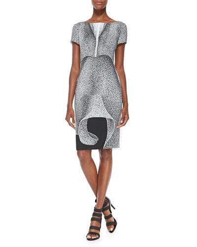 Escada Thilo Westermann Short-Sleeve Petal-Print Dress, Black