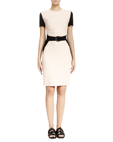 Stella McCartney Colorblock Mesh-Inset Sheath Dress, Rose/Black
