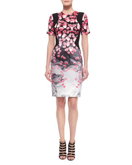 Prabal Gurung Tulip-Print Contrast-Inset Sheath Dress