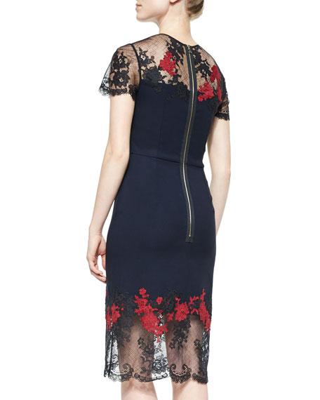 Keni Floral-Embroidered Lace-Trimmed Dress