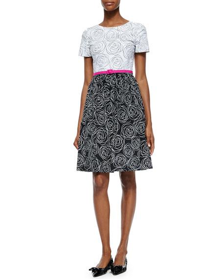 Oscar de la RentaColorblock Rose-Print Fit-And-Flare Dress