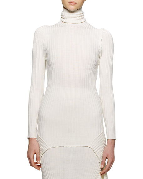 Stella McCartney Long-Sleeve Ribbed Turtleneck Sweater