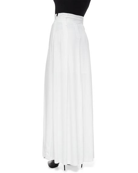 Long Pleated Carwash Skirt