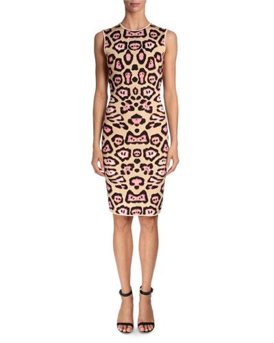 Jaguar-Print Punto Milano Dress, Pink