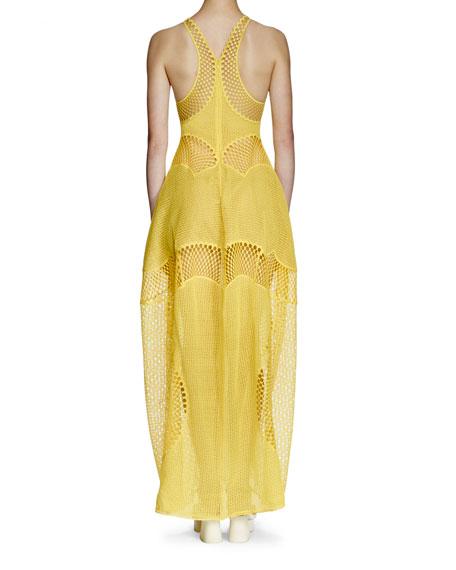 Valerie Mesh-Embroidered Gown, Lemon