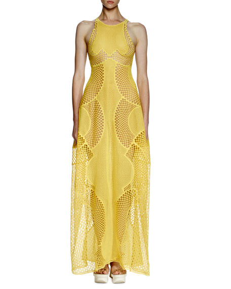 Stella McCartney Valerie Mesh-Embroidered Gown, Lemon