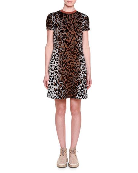Stella McCartney Short-Sleeve Leopard-Print Shift Dress