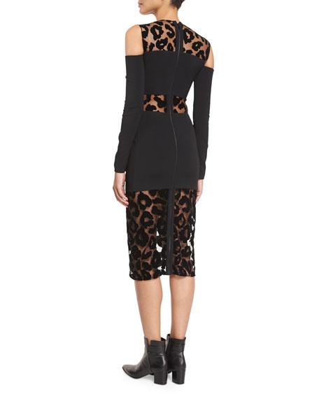 Leopard-Burnout Cold-Shoulder Dress, Black