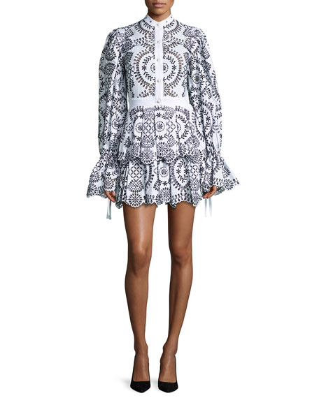 Alexander McQueen Embroidered Eyelet Fit & Flare Dress,