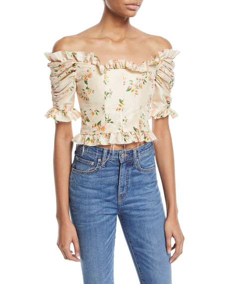 Brock Collection Off-the-Shoulder Mini Floral-Print Taffeta