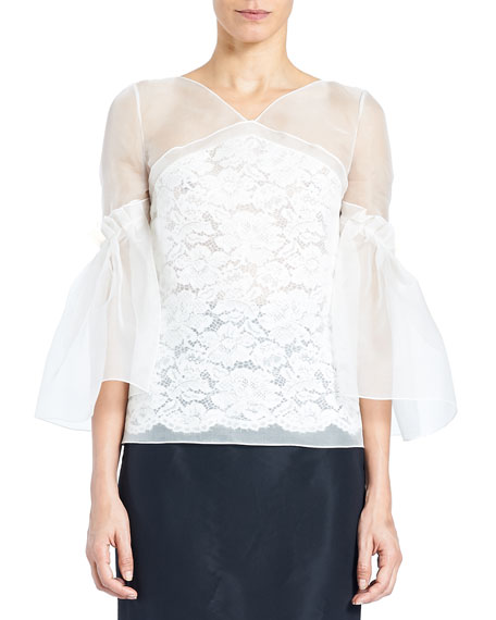 Carolina Herrera Organza Lace V-Neck Blouse with Full