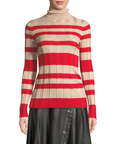 Long-Sleeve Striped Rib-Knit Turtleneck Sweater