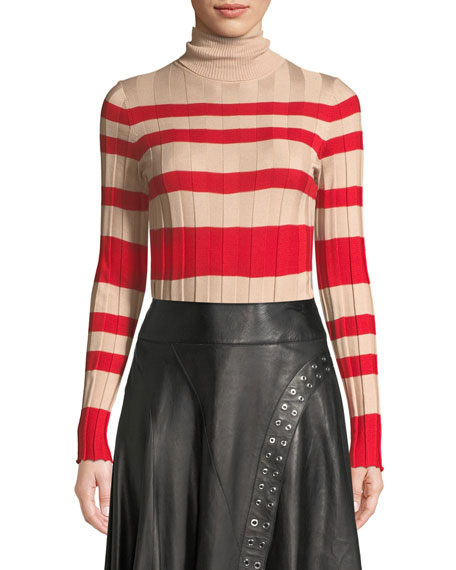 Derek Lam Long-Sleeve Striped Rib-Knit Turtleneck Sweater