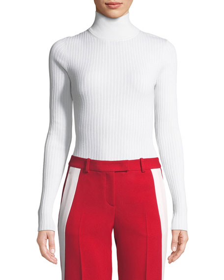 Turtleneck Long-Sleeve Ribbed Sweater