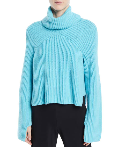Turtleneck Long-Sleeve Cropped Chunky Ribbed Sweater