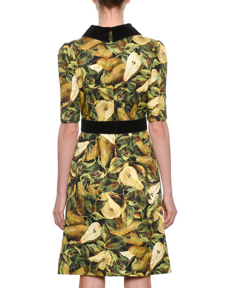 Short-Sleeve Pear-Print Brocade A-line Dress w/ Velvet