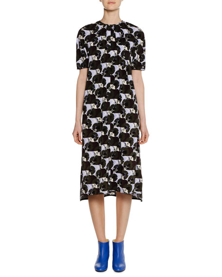 Short-Sleeve A-Line Printed Midi Dress w/ Pleating