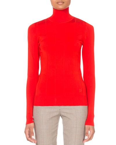 4G Ribbed Turtleneck Sweater
