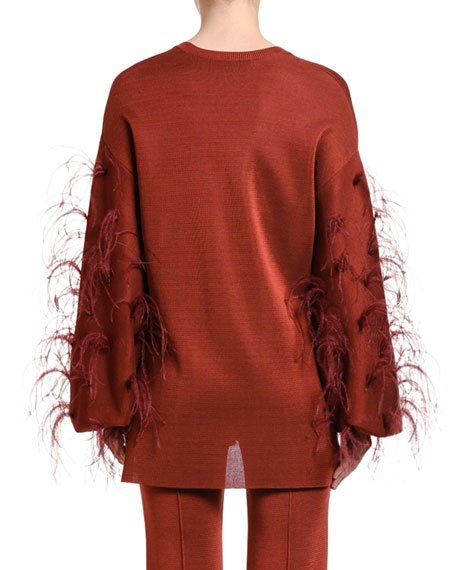 Valentino Feather-Sleeve V-Neck Sweater