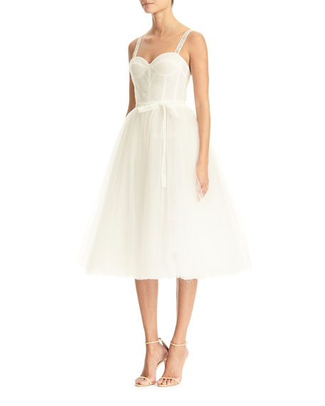 Carolina Herrera Logo-Strapped Tulle Dress