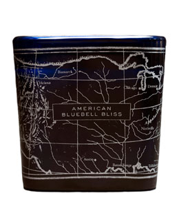 Be the Light NY American Bluebell Bliss Candle