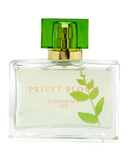 Hampton Sun Privet Bloom Eau de Parfum, 1.7oz
