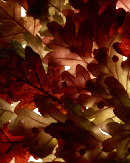 English Oak & Redcurrant Cologne, 3.4 oz./ 100ml