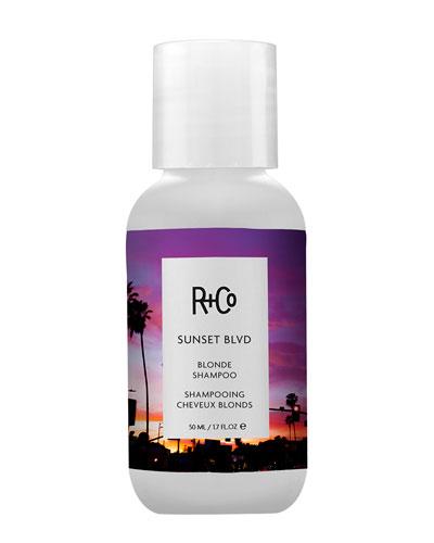 SUNSET BLVD Travel Shampoo, 1.7 oz./ 50 mL