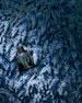 Wisteria Blue Scented Body Cream, 6.7 oz. / 200 ml