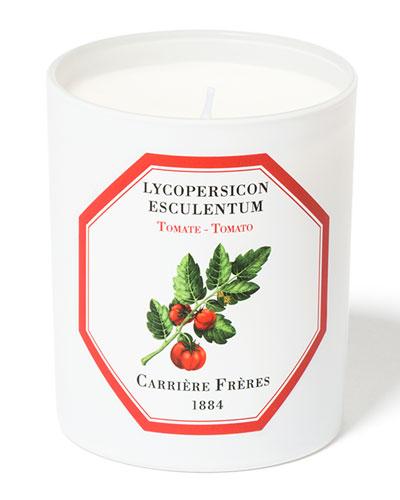 Tomato Candle, 6.5 oz. / 184 g