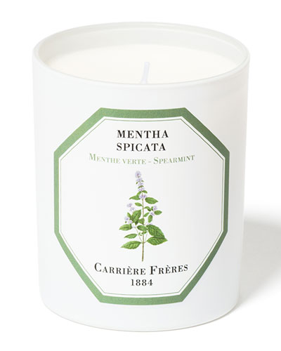 Spearmint Candle, 6.5 oz. / 184 g