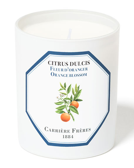 Carriere Freres Orange Blossom Candle, 6.5 oz.