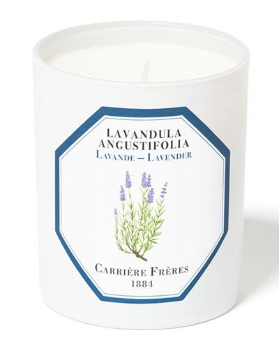 Lavender Candle, 6.5 oz. / 184 g