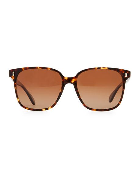 Marmont Polarized Plastic Sunglasses, Brown Tortoise