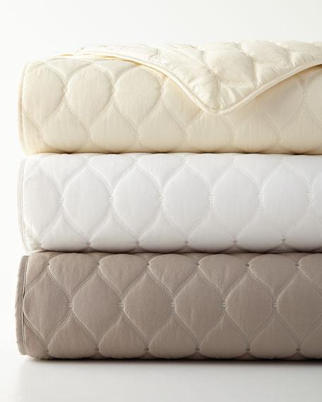 Queen Turquoise Trellis Comforter Set
