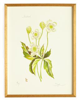Thimbleweed Print