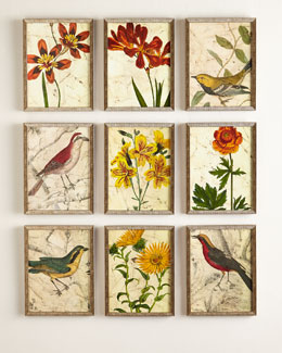 Nine Birds & Flowers Prints